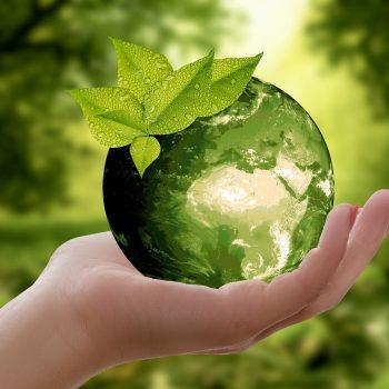Ecologie et les arguments du Greenwashing